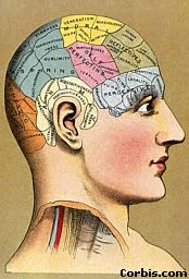 Funciones ejecutivas del cerebro. ppt